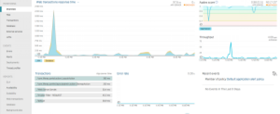 new_relic_apm_java_overview-300x174.png